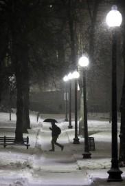 इस बर्फीले तूफान से छह करोड़ से ज्यादा लोग प्रभावित हुए हैं। न्यूयॉर्क, न्यूजर्सी, कनेक्टिकट, रॉड आइलैंड, मैसाचुसेट्स व न्यू हैंपशायर में हजारों उड़ानें रद कर दी गई हैं। (फोटो: एपी)