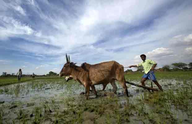 Rahul Gandhi, land acquisition bill, Narendra Modi