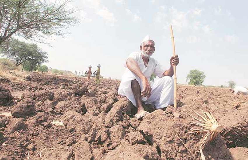 Farmers Suicide, Politics, Farmers Suicide Maharashtra, Farmers Suicide in India