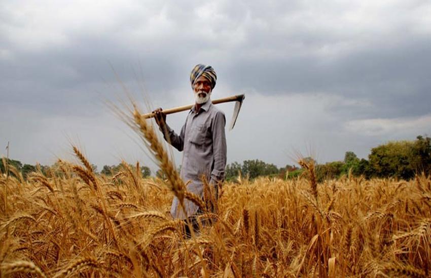 Nabard, Crop Loan, Agricultural Ministry, V C Sarangi, Agriculture Secretary, Shobhana K Patnaik, MODI GOVERNMENT, नाबॉर्ड, मोदीस सरकार, कृषि ऋण, किसानों की आत्महत्या, सूखा, किसान