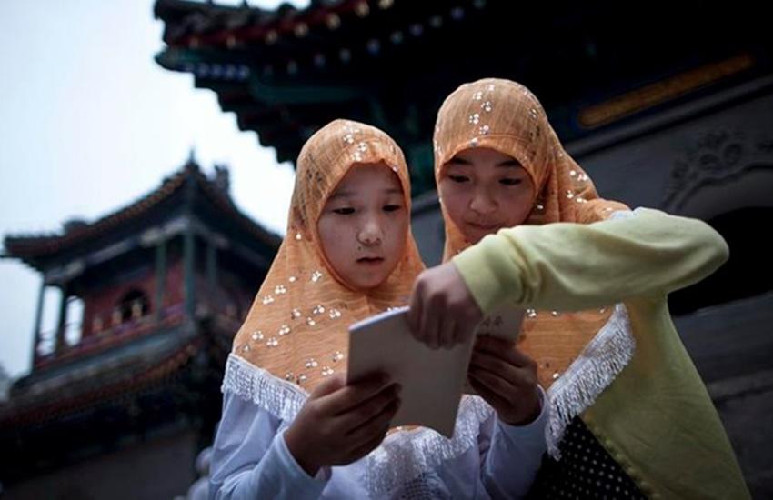 China, education, culture, books, world news
