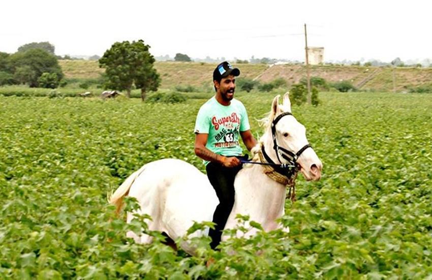 Ravindra Jadeja, Ravindra Jadeja news in hindi, Ravindra Jadeja farmhouse, Ravindra Jadeja gujarat loins, Ravindra Jadeja IPL, Jadeja, Gujarat Loins, Gujarat Loins IPL, Ravindra Jadeja Horse Picture, Ravindra Jadeja Instagram, Ravindra Jadeja horses pic