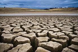 Thinking, drought, jansatta chaupal