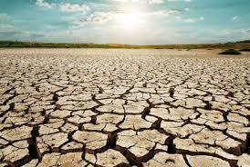 Ram Kripal Yadav,Lok Sabha,Drought,Maharashtra,Uttar Pradesh,India News
