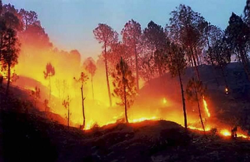 Uttarakhand fire, Uttarakhand Forest fires, fire Uttarakhand forest, Uttarkashi Fire, Uttarkashi Forest Fire