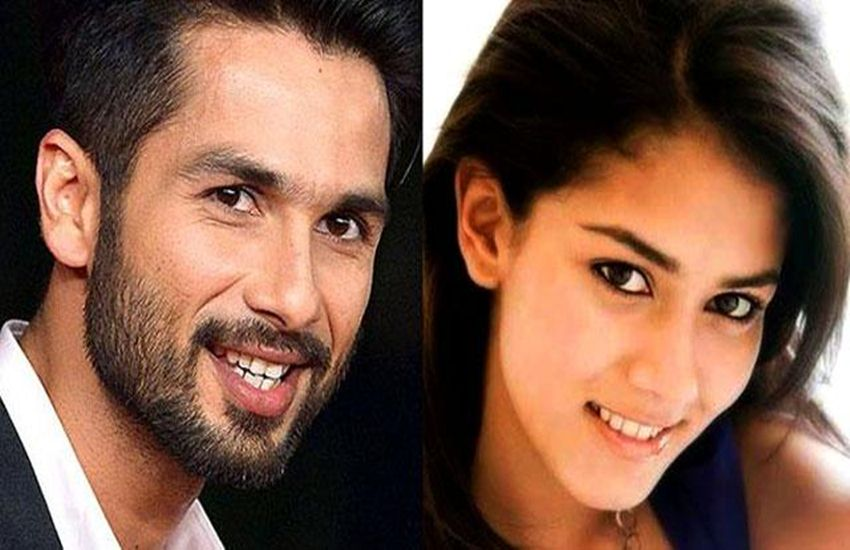 bollywood, Shahid Kapoor, first met, Mira Rajput, first date, Udta Punjab, Shahid As a tomy roll