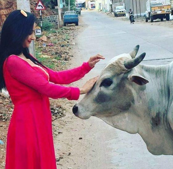 Madirakshi Mundle, Madirakshi Mundle Photos, Madirakshi Mundle real life Photos, Siya ke Ram, Siya ke Ram Actress, Siya ke Ram Actress name, Siya ke ram star cast, Madirakshi Mundle hot photos, tv news, entertainment news, bollywood news
