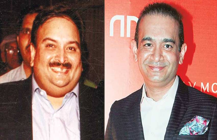 PNB SCAM, PNB, Nirav Modi, Mehul Choksi, Punjab National Bank, PNB fraud, PNB fraud case, PNB Nirav Modi, Nirav Modi PMLA, hindi news, news in Hindi, Jansatta