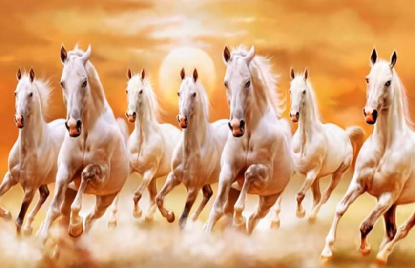 Horse, Horse facts, Horse benefits, Horse and religion, Horse and astrology, Horse worship, Horse pray, Horse and god, Horse pic, Horse photo, Horse photo worship, worship of Horse, Religion News