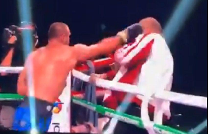 Boxer Attackd Trainer