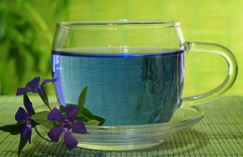 weight loss, weight loss drinks, health benefits of blue tea, blue tea, benefits of blue tea, hormonal balance, detoxification of the body, digestive health, lifestyle, lifestyle news, health, health news, hindi news, news in hindi, jansatta