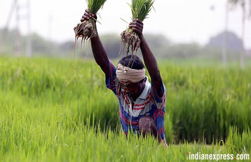farmers loan waiver scheme