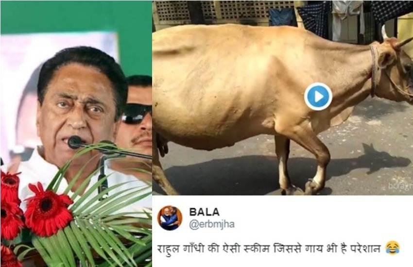 Kamalnath, Kamalnath Government, Madhya Pradesh, Congress, Yuva Swabhiman Yojana, Cattle Caretaker, Training, Unemployment, Twitter, Trolls, Trending News, Hindi News