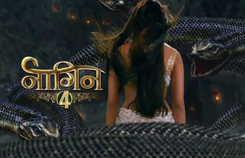 Naagin 4,. Naagin 4 coming soon, Ekta Kapoor New Naagin in Season 4, Naagin season 4, Naagin 3 endgame, Naagin 4, Populer show Naagin, Mouni Roy in Naagin 4, Surbhi Jyoti in Naagin 4, Hina Khan in Naagin 4, their is suspense in Naagin 4, entertainment news, bollywood news, television news. entertainment news