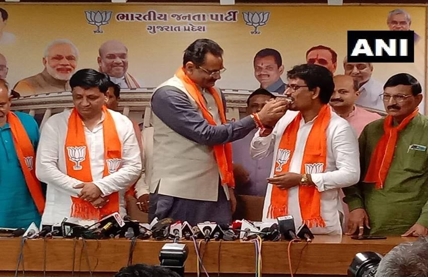 Ahmedabad, Alpesh Thakor, Dhaval Singh Zala, join Bharatiya Janata Party, BJP, Gujarat BJP, President Jitu Vaghani